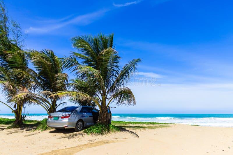 Automobile sotto la palma sulla spiaggia immagini stock libere da diritti