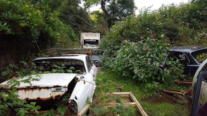Automobili abbandonate immagine stock