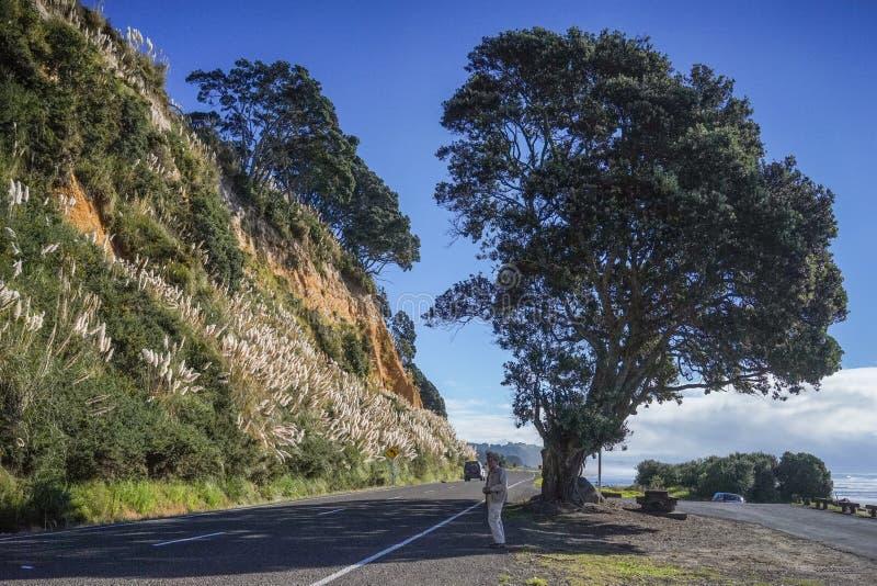 Automobili che parcheggiano sulla strada rurale immagini stock libere da diritti