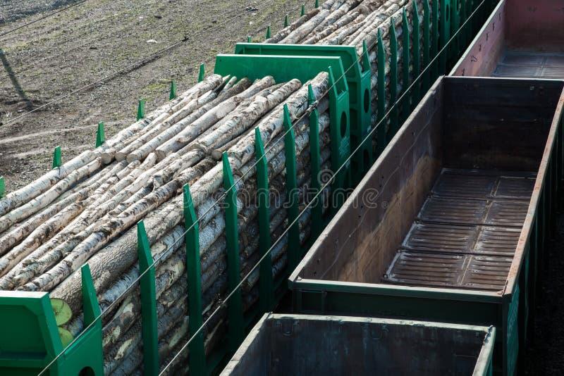 Automobili di trasporto ferroviarie trasportare gli alberi ed i ceppi Registrazione e trasporto di legname fotografia stock libera da diritti