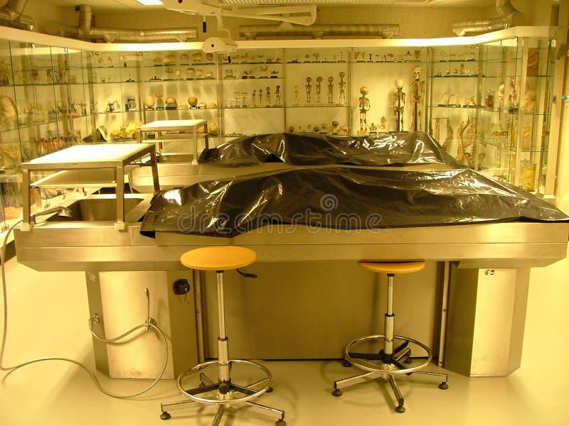 Autopsieraum stockfotografie