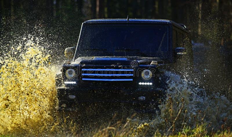 Autorennen in de herfst bosuiterste, uitdaging en 4x4 voertuigconcept SUV of offroad auto op weg met gras wordt behandeld dat stock foto