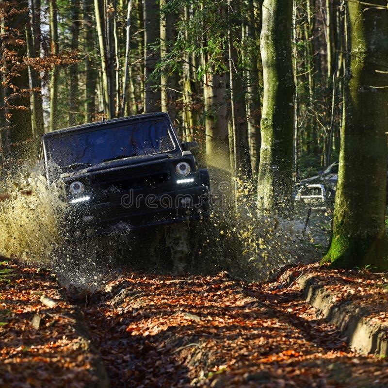 Autorennen im Herbstwald SUV oder Auto im nicht für den Straßenverkehr auf dem Weg bedeckt mit den Blättern, die Pfütze mit Wasse lizenzfreie stockbilder