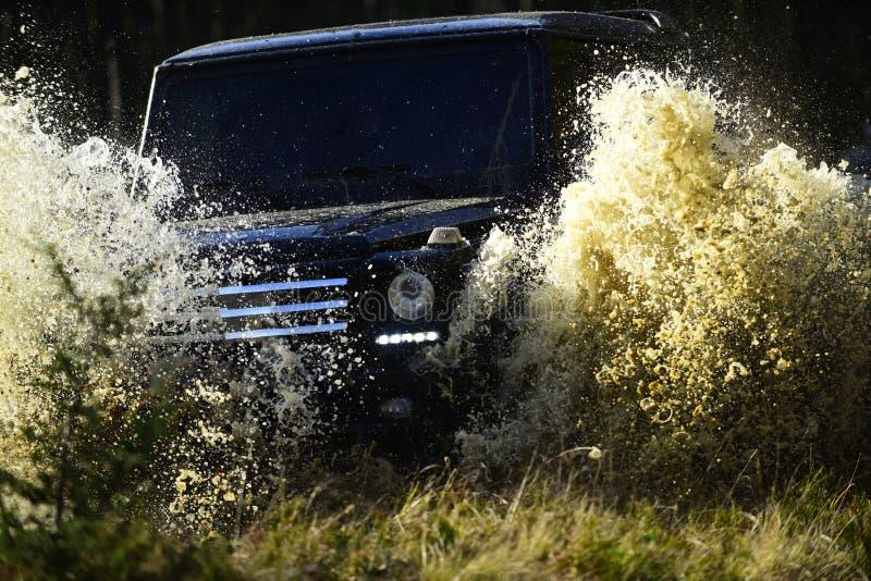 Autorennen im Herbstwald SUV oder Auto im nicht für den Straßenverkehr auf dem Weg bedeckt mit Grasüberfahrtpfütze mit Wasserspri stockfotos