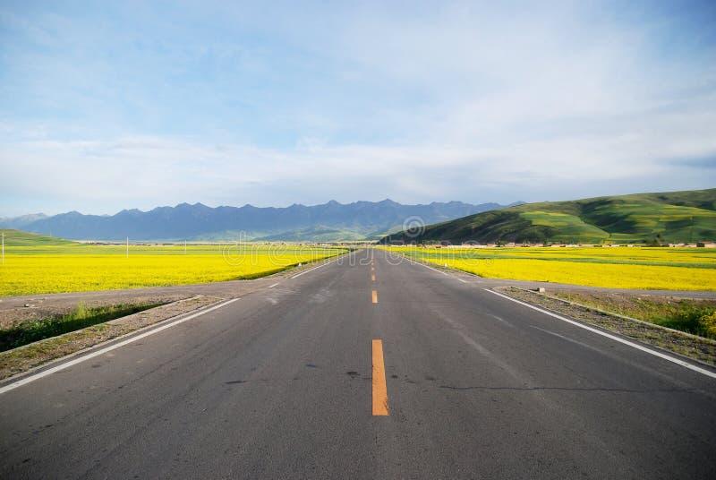 Autoroute de Qinghai Chine photo libre de droits