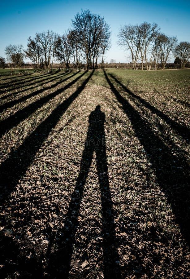 Autorretrato de la diversión de un fotógrafo y de su sombra en invierno fotografía de archivo libre de regalías