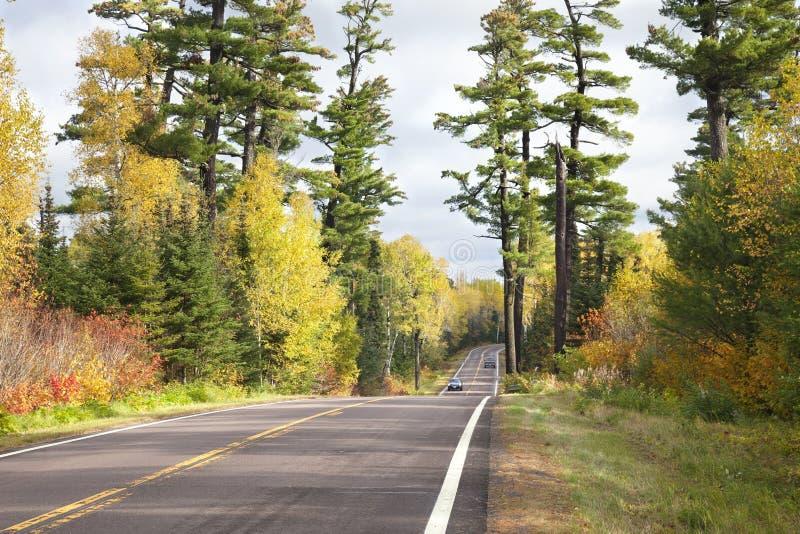 Autos auf dem Gunflintweg zwischen hohen Pinien und Herbstfarben lizenzfreies stockfoto
