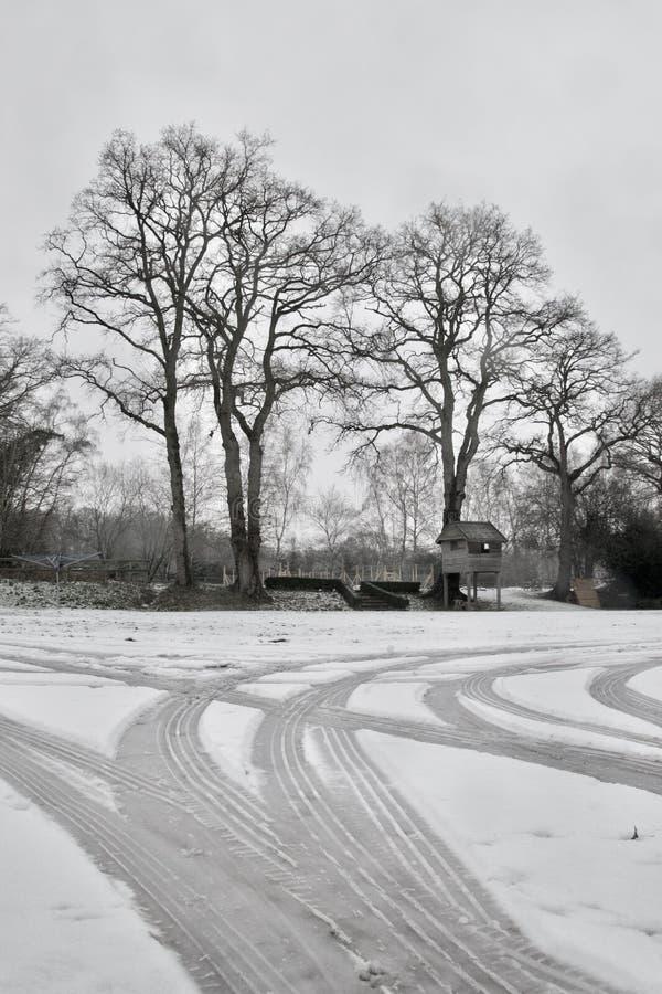 Autosporen in sneeuw op oprijlaan; het naakte de winterbomen en huis van de tuinboom royalty-vrije stock fotografie