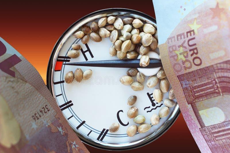 Autothermometer tien euro bankbiljetten en hennepzaden stock foto's