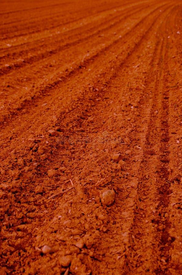 Autralian Sunbaked Field Stock Photos