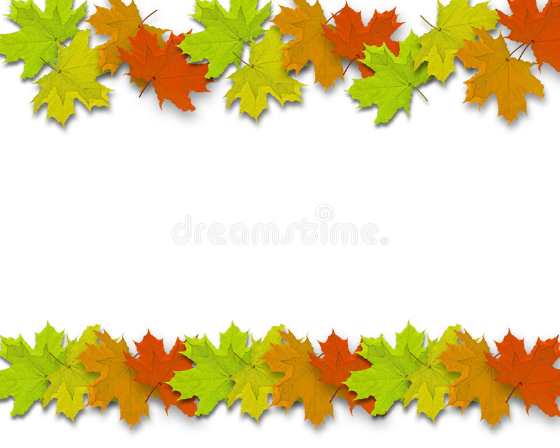 Autum Background leaves. Autum Background with colorful fall leaves falling down from tree royalty free stock photos