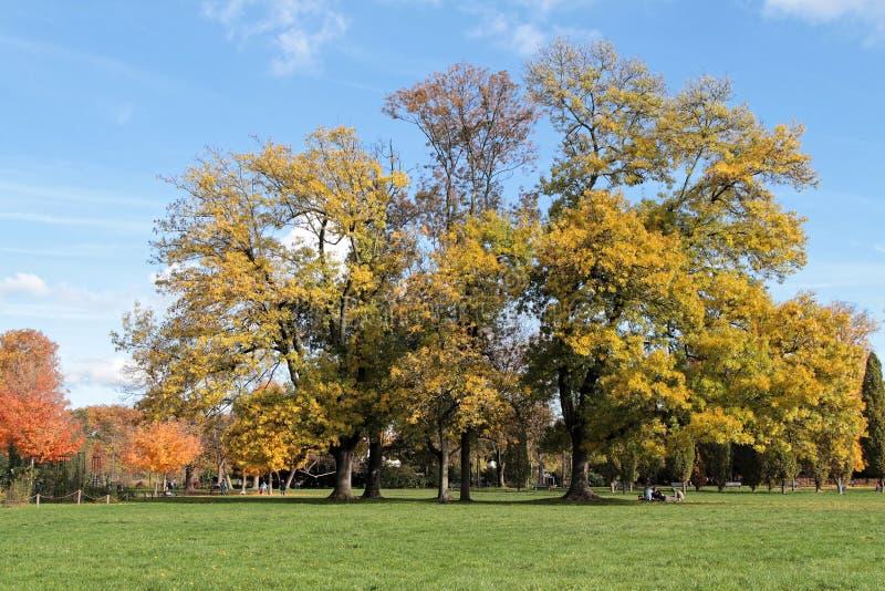 Autum colors at the park. De la Tete d'Or in Lyon royalty free stock photo