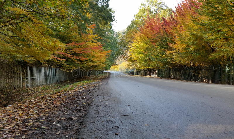 Download Autum Dans Le Distrikt De Masalli Photo stock - Image du nature, réserve: 77154214