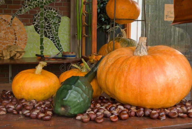 Download Autum decoration pumpkins stock image. Image of orange - 3431799