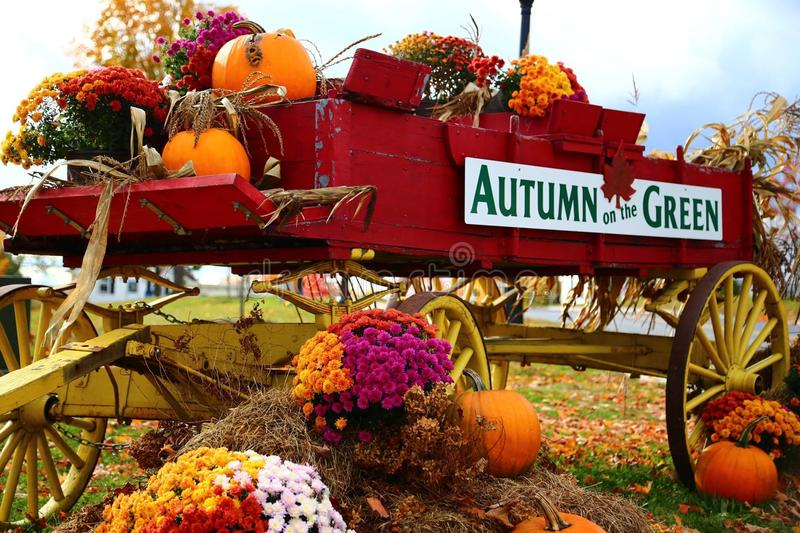 Autum on The Green Flower Wagon royalty free stock photos