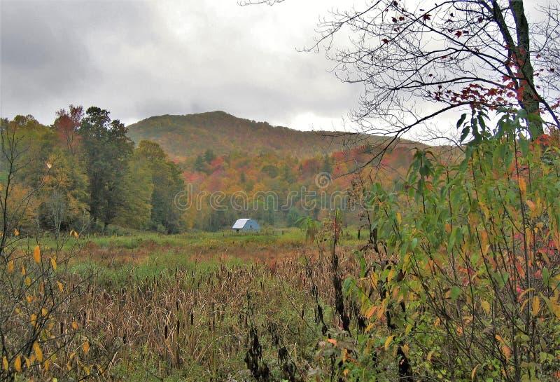 Autum lungo Virginia Creeper Trail fotografia stock libera da diritti