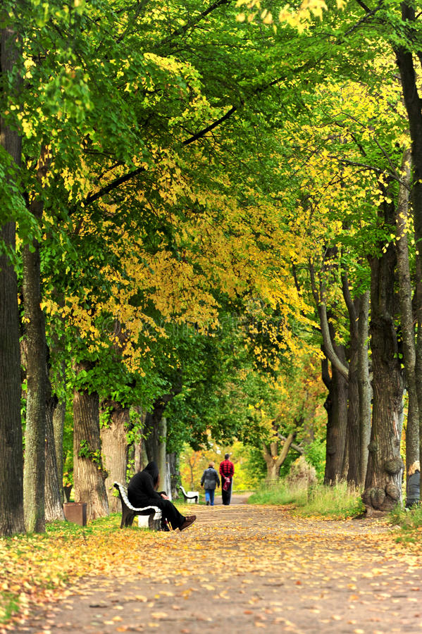 Autum park,Moscow, Russia stock photo