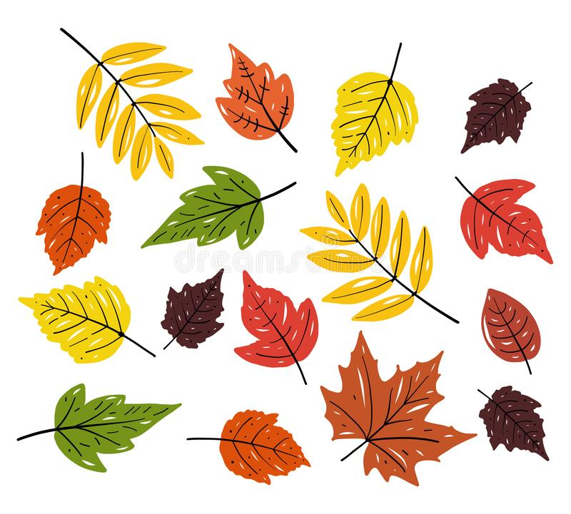 Autum season design. Leaves hand drawn vector set illustration. Isolated on white background. stock illustration