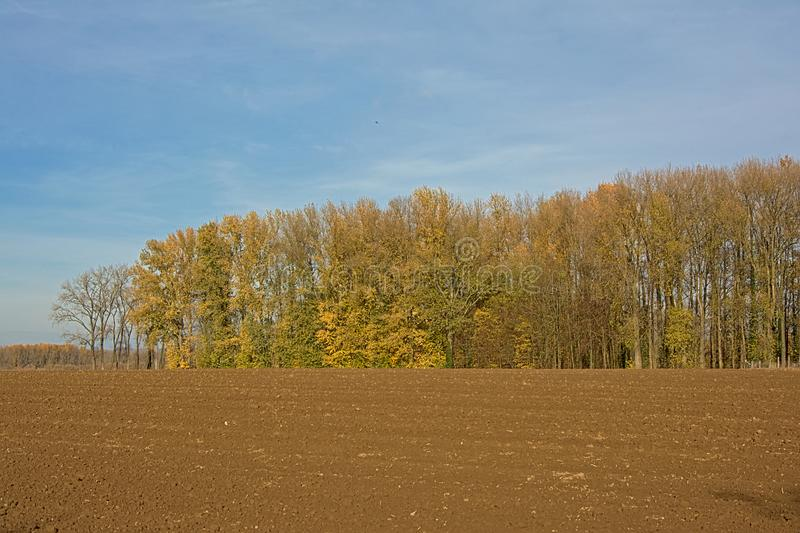 Autumn farm landscape in the Flemish Ardennes, Belgium royalty free stock images
