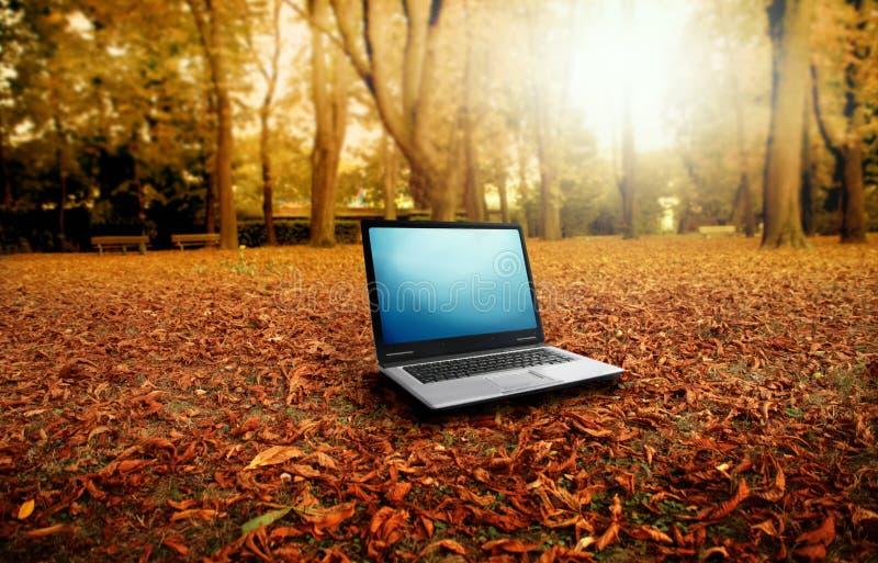 Autumn. Modern laptop in autumn landscape royalty free stock photos