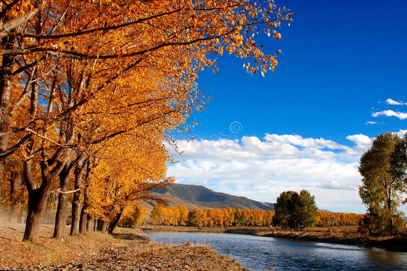 Autumn. Beautiful landscape in autumn of westen China royalty free stock images