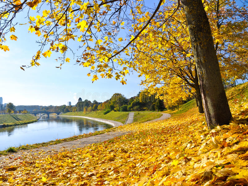 Autumn. Colors in full bloom stock images