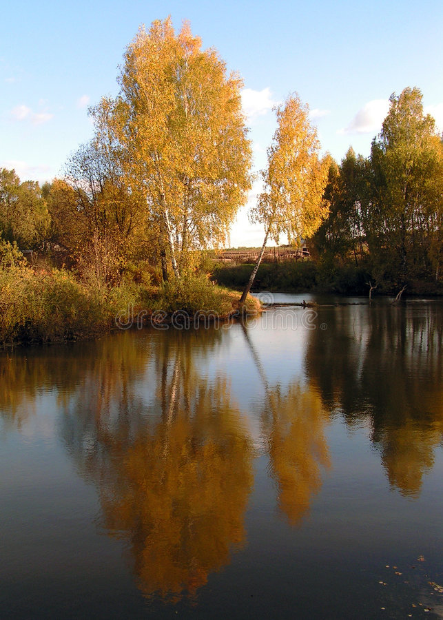 Download Autumn. stock image. Image of nature, reflection, birch - 192439