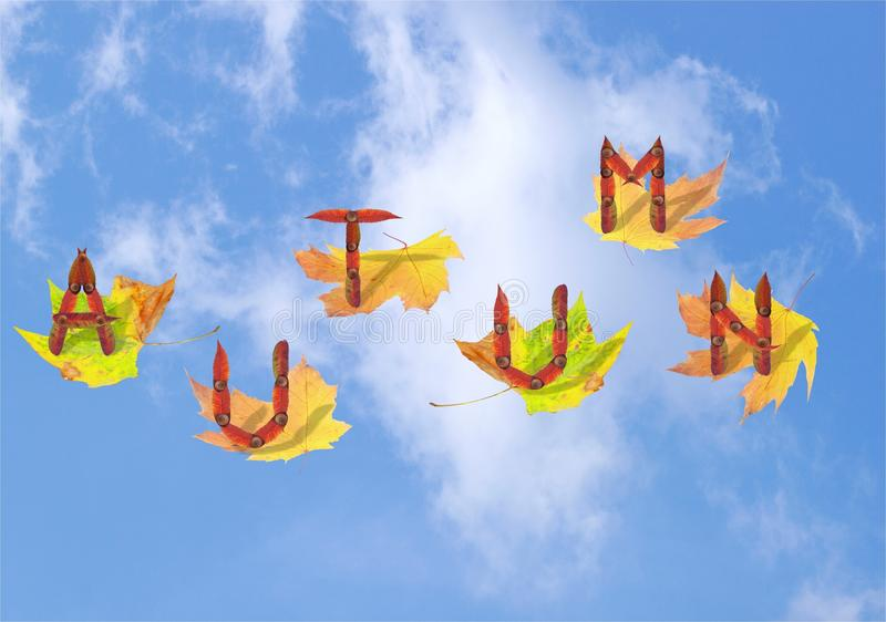 Autumn. Concept with letters made from leaves flying on the leaves royalty free stock photography