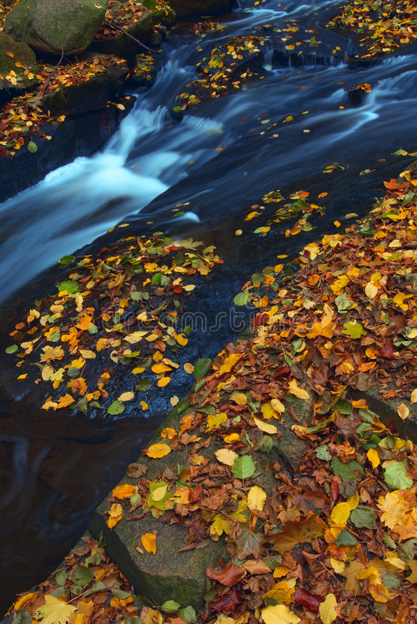 Free Autumn-3 Stock Photography - 3522452