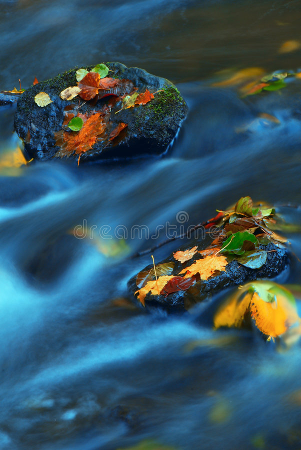 Free Autumn-5 Royalty Free Stock Images - 3522579