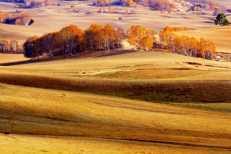 Autumn. Beautiful autumn is in bashong royalty free stock images