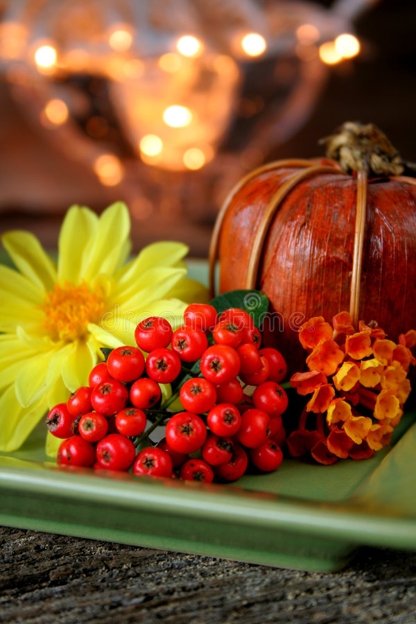Free Autumn Stock Photos - 6395903