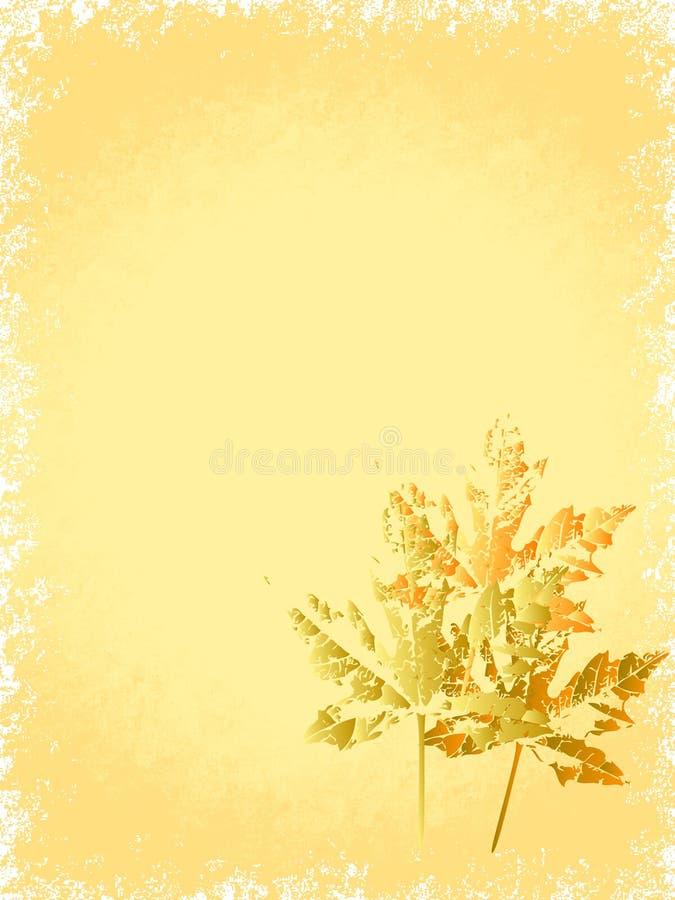 Free Autumn Stock Photo - 6664620