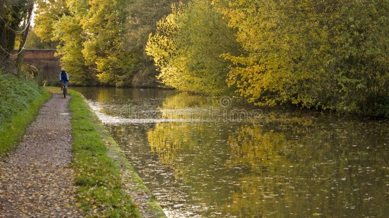 Download Autumn stock photo. Image of autumn, paths, leaves, colour - 7047088