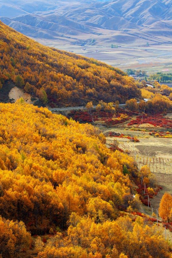 Free Autumn Stock Image - 8389451