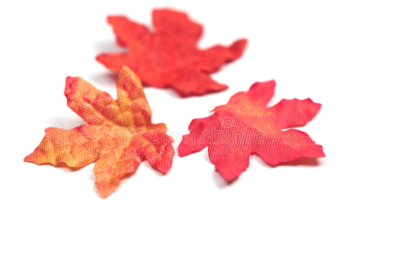 Autumn. Artificial autumn leaves on white background stock images