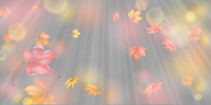 Falling Autumn Leaves. Autumn abstract background with falling maple leaves royalty free illustration