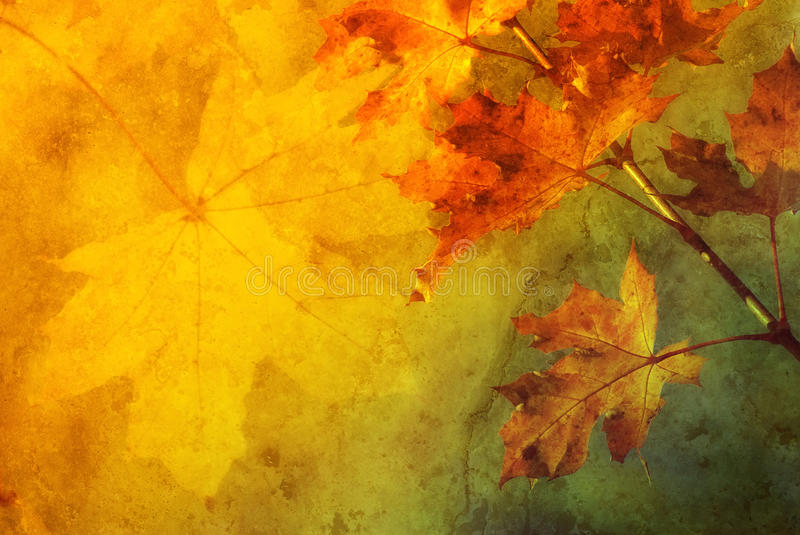 Autumn abstract. Colorful autumn abstract background illustration with fall leaves and copy space royalty free stock image
