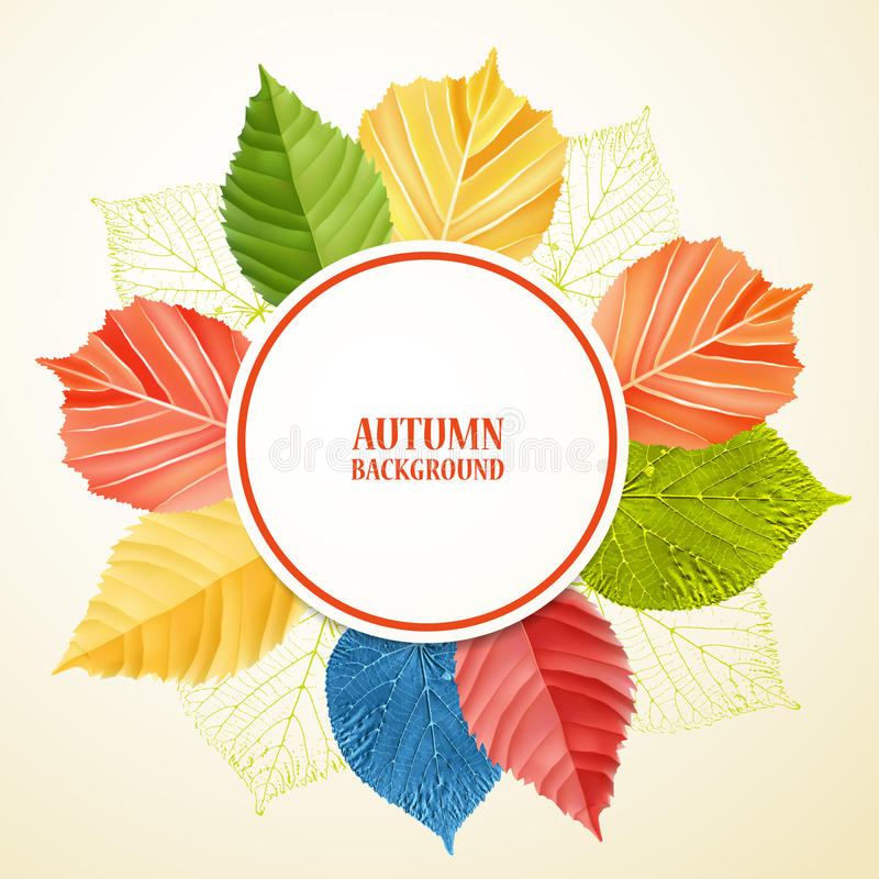 Autumn abstract floral background with place for your text vector illustration