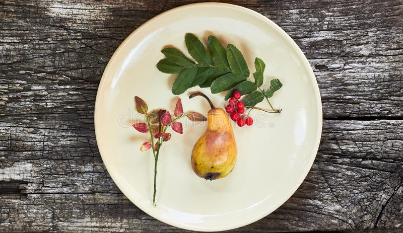Autumn abstract still life from natural fall fruit and berry. Pear, rowan and pink twig of blueberry plant on a round plate on old rustic wooden background royalty free stock photo