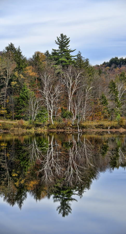 Autumn Adirondack Lake Water Reflections Nr 13 stock foto's