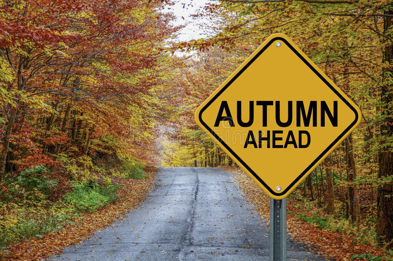 Autumn ahead cautionary road sign against a fall background. Autumn ahead cautionary road sign against a beautiful fall background stock illustration