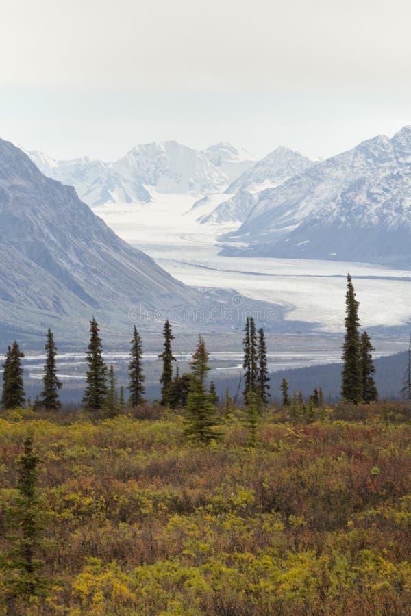 Autumn Alaskan Landscape stock photography