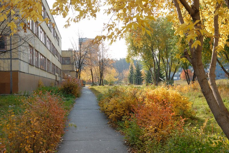 Download Autumn alley stock image. Image of spruce, pavement, shrubbery - 6627287
