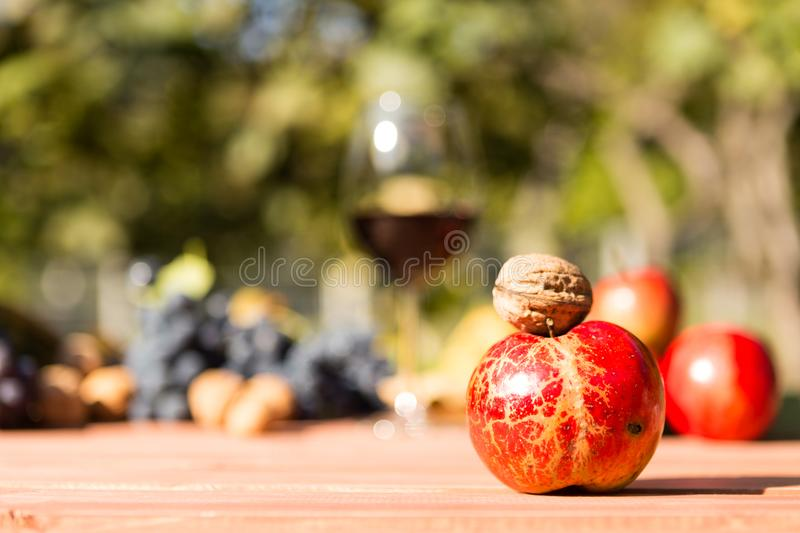 Autumn apple and wallnut with sunny fall background royalty free stock photography