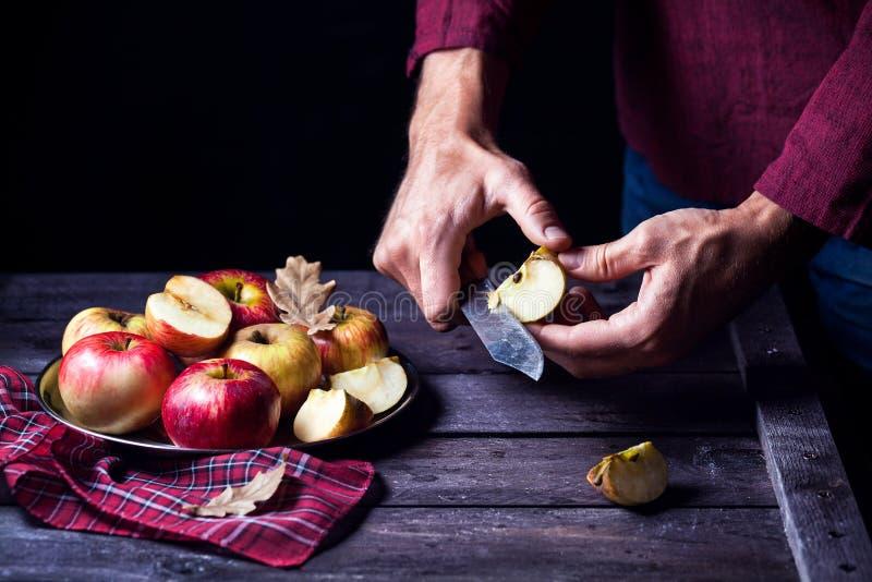 Autumn Apples fotografering för bildbyråer