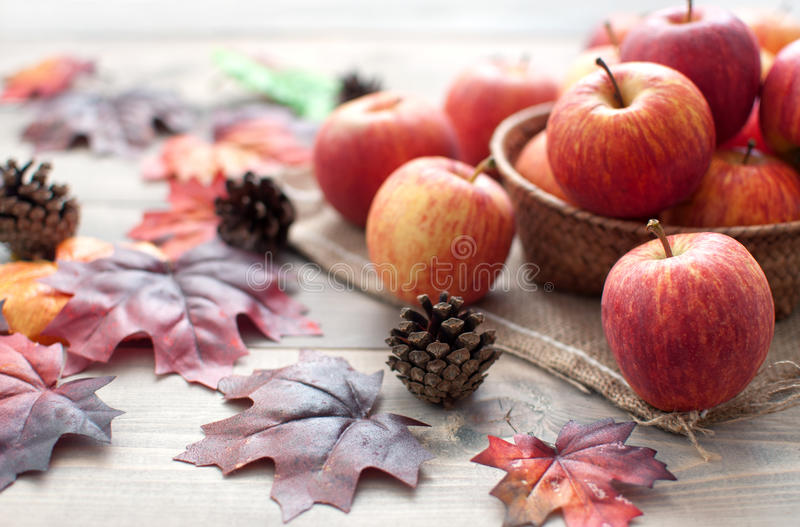 Autumn apples and leaves royalty free stock image