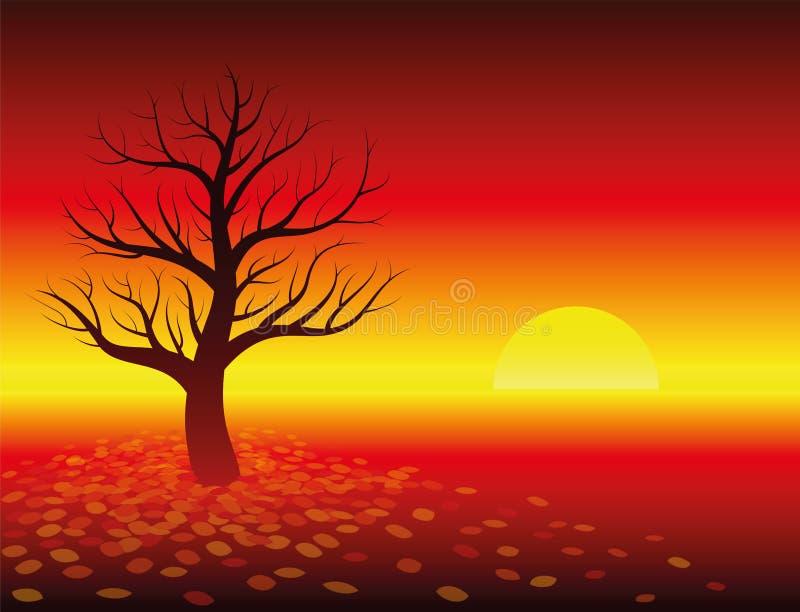 Autumn Atmosphere Sunset Leafless Tree ilustração stock