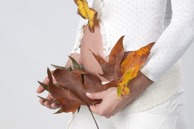Autumn Baby royalty free stock image