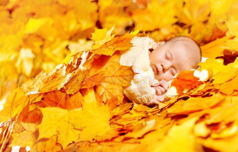 Autumn Baby Sleeping, neugeborene Kinderfall-Gelb-Blätter, neugeboren stockfotos
